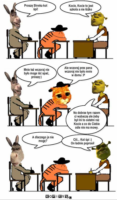 Shrek Jako Nauczyciel Komiks Internetowy