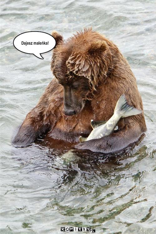 Niedzwiedz i ryba – Dajesz maleñka!
