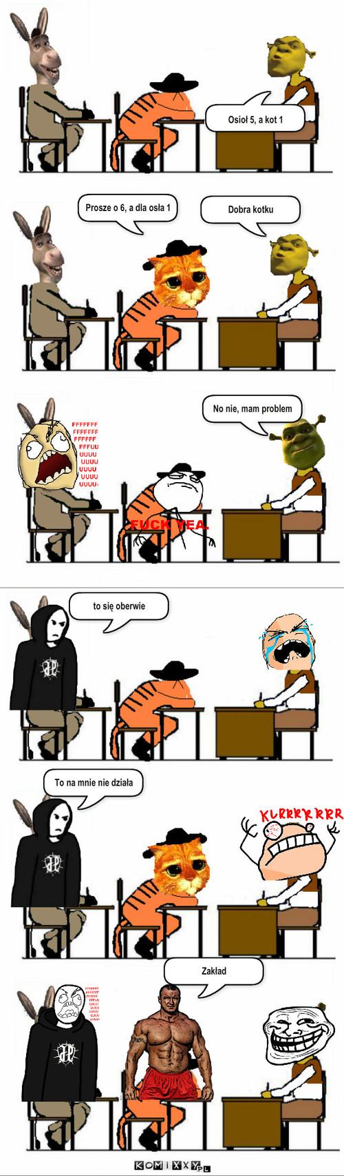 Shrek Osioł Jp I Mariusz Komiks Internetowy