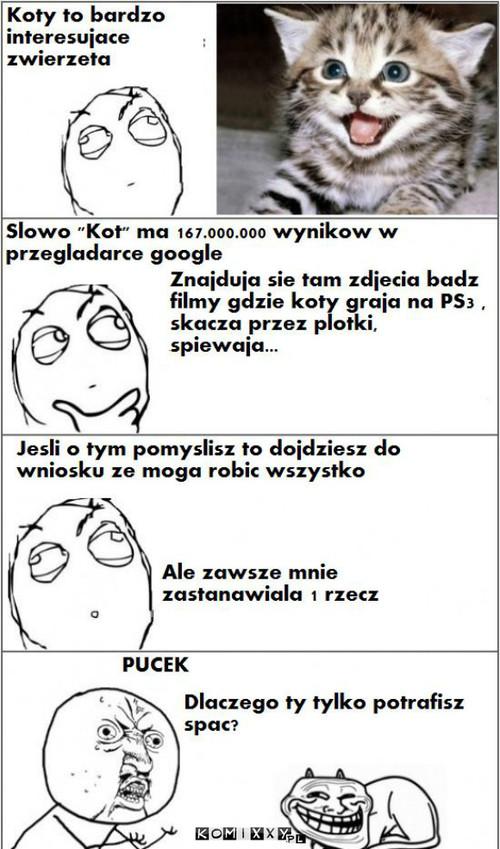 Koty Komixxypl