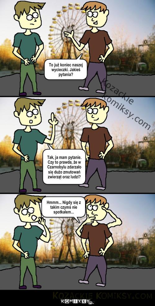W Czarnobylu – Tak, ja mam pytanie. Czy to prawda, że w Czarnobylu zdarzało się dużo zmutowań zwierząt oraz ludzi? Hmmm... Nigdy się z takim czymś nie spotkałem... To już koniec naszej wycieczki. Jakieś pytania?