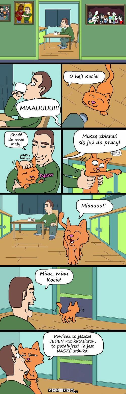 Miauu –
