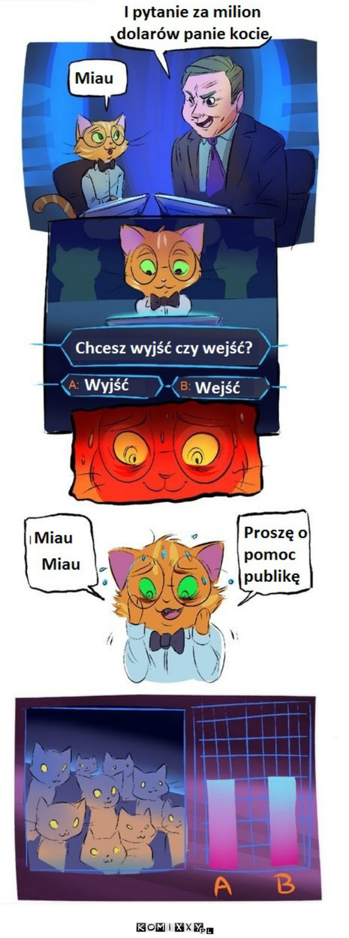 Odwieczny dylemat kotów –