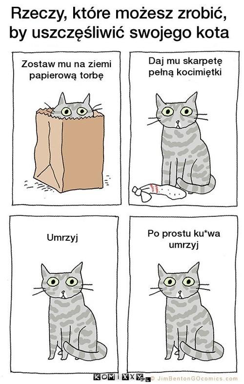 Rzeczy, które możesz zrobić, aby uszczęśliwić swojego kota –