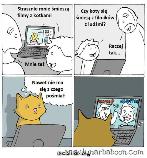Koty i ludzie –