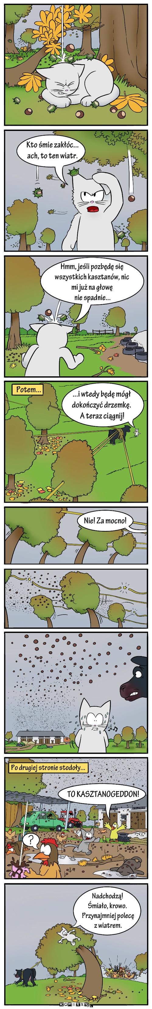 Jesienny opad –