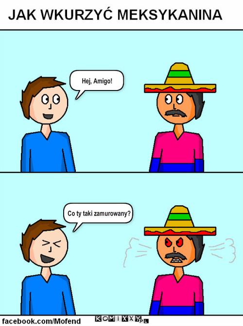 Jak wkurzyć Meksykanina – Hej, Amigo! Co ty taki zamurowany?