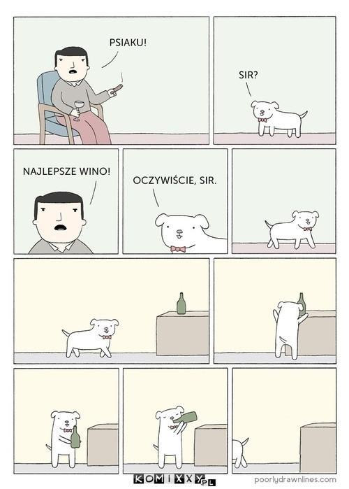 Pies przyjacielem człowieka –