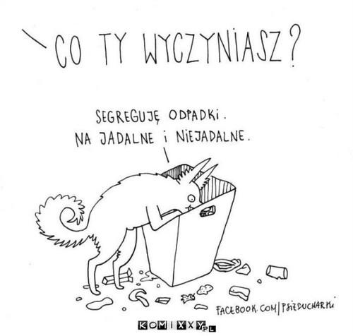 Segregowanie odpadków –