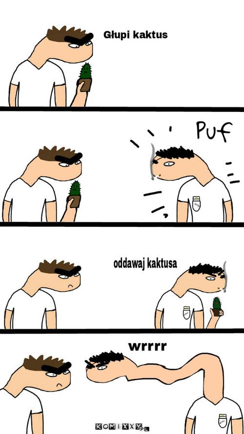 Kiedy ktoś krzyczy na mojego kaktusa (PARODIA) –